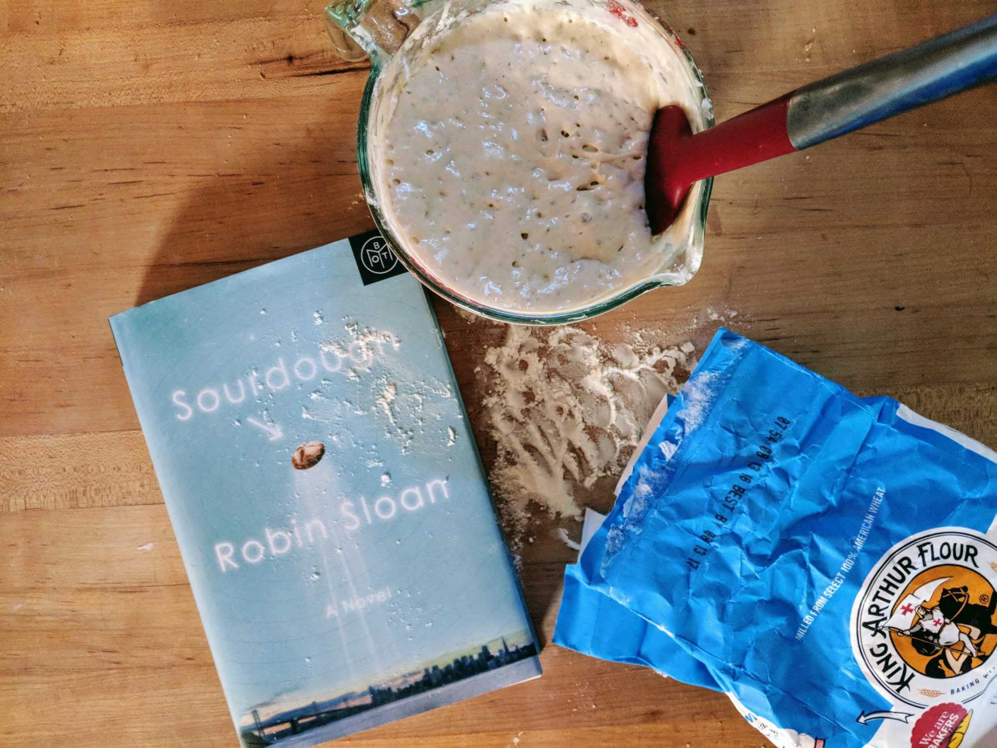 Sourdough Book Review