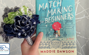 Matchmaking for Beginners Book Review