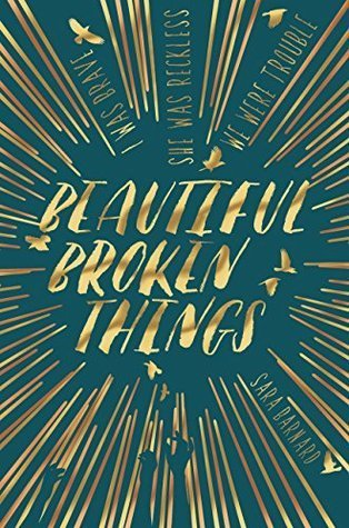 Beautiful Broken Things book