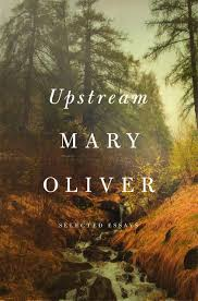 Upstream Book Cover