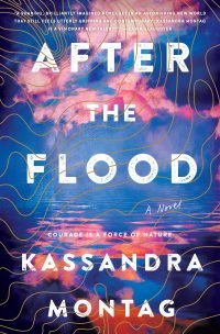 After the Flood Book Cover